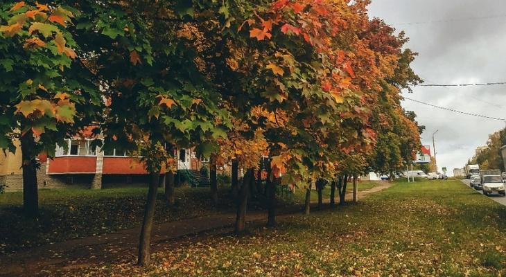 Солнечно и до +21: синоптик рассказал о погоде в Кировской области на выходных