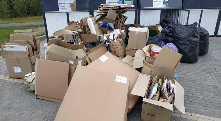 Куда сдавать раздельный мусор в Кирове: список мест