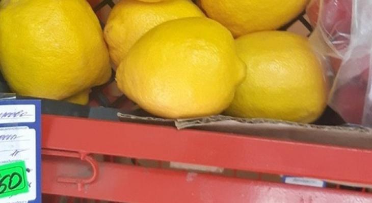 За месяц на кировские прилавки попало почти 3 тонны фруктов с вредителями