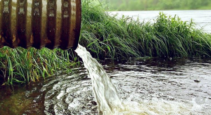В Кировской области на участок мужчины несколько лет сливали сточные воды
