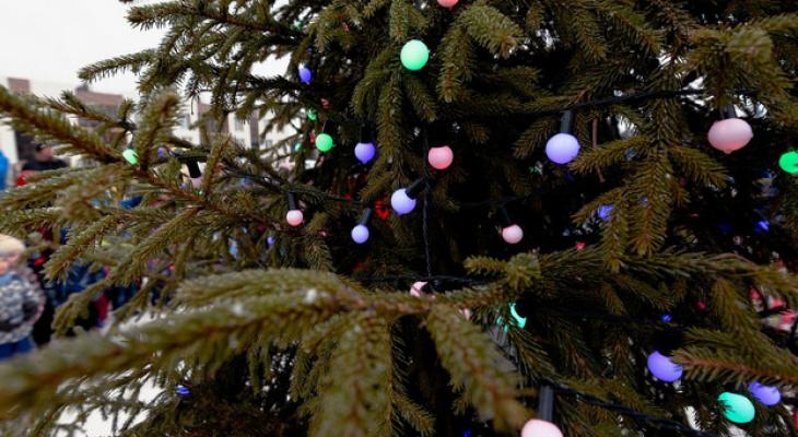 Как в любимых рождественских фильмах: сказочная жизнь в таунхаусах от «Железно»