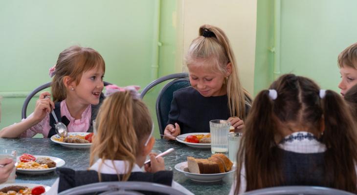 В Кирове приостановлена оплата питания детей в школах по транспортным картам