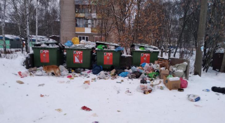 """""""Куприт"""" прокомментировал мусорный коллапс в Кирове"""