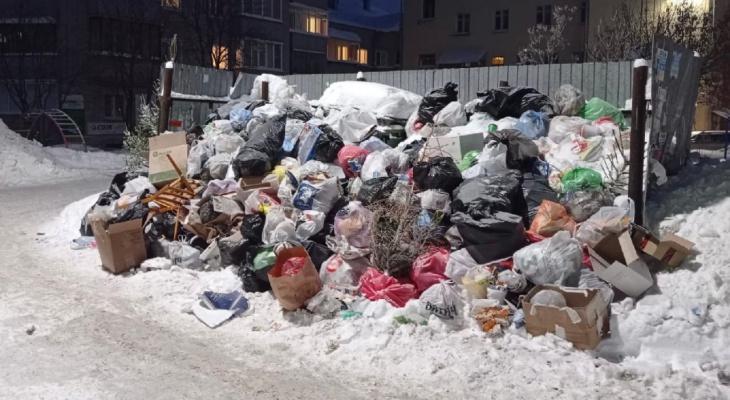 """Бывший замглавы """"Куприта"""" спрогнозировал мусорный коллапс до весны"""