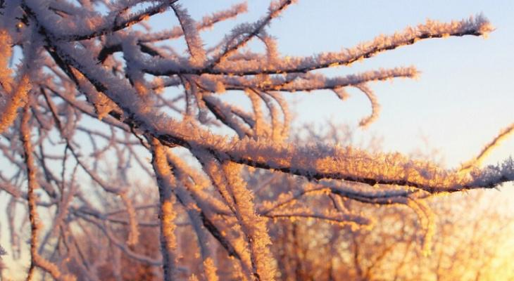 МЧС объявило новое метеопредупреждение на выходные из-за аномальных холодов