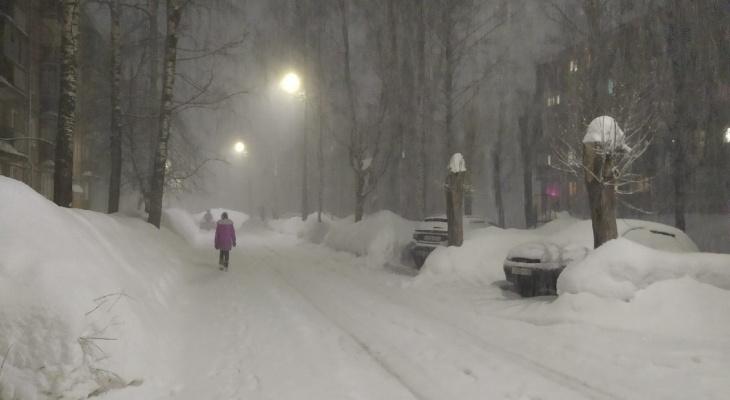 Январские морозы в марте: Кировскую область ждет арктическое вторжение