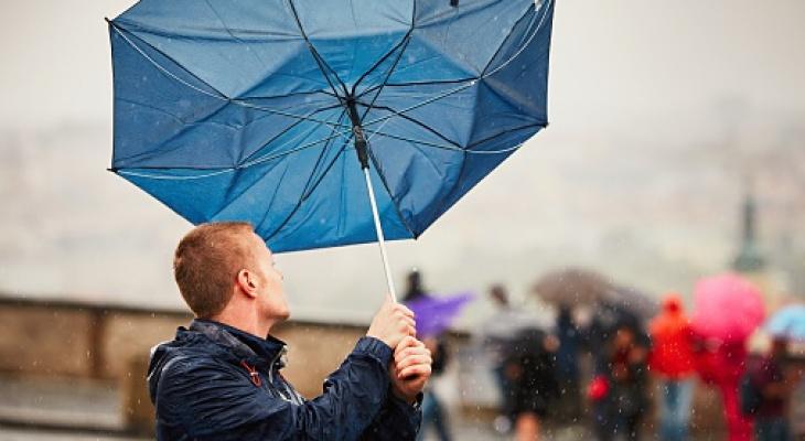 В Кирове объявлено метеопредупреждение из-за усиления ветра