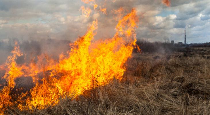 В Кировской области начался сезон горящей травы: МЧС сообщило о первом пожаре