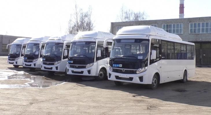 На улицы Кирова выедут 10 новых автобусов