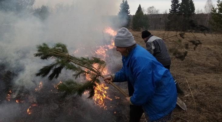 В Кировской области жители деревни помогли спасателям предотвратить лесной пожар