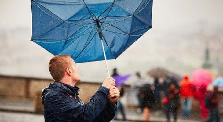 На Киров надвигается шквалистый ветер: объявлено метеопредупреждение
