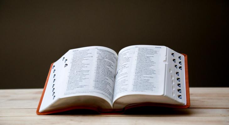 «Петрикор» и «глабелла»: угадайте значения странных слов, которые обозначают обычные вещи