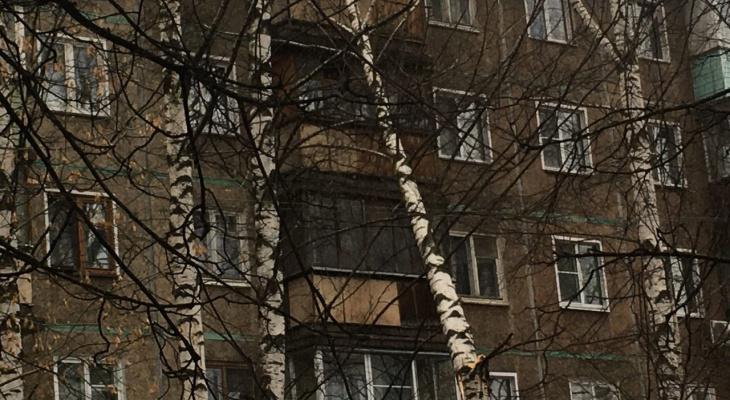 Фотоподборка: в Кировской области ветер ломает деревья, затопило улицы
