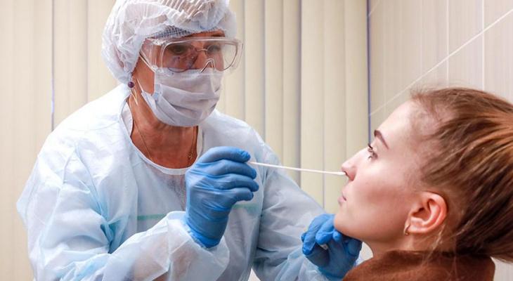 Стало известно, сколько кировчан заразились COVID-19 за сутки