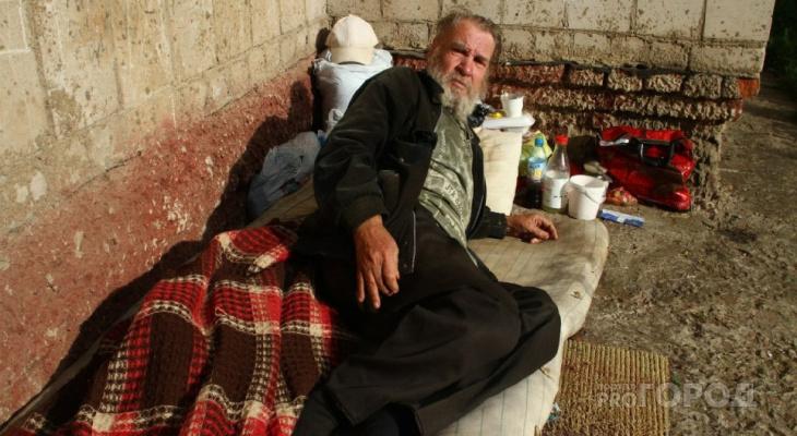 Инструкция: как помочь бездомным в Кирове?