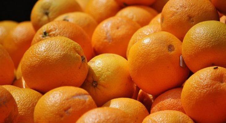 В Кировскую область привезли 91 тонну зараженных фруктов