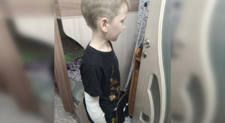 В Кировской области на первоклассника напала бездомная собака: ребенку наложили 9 швов