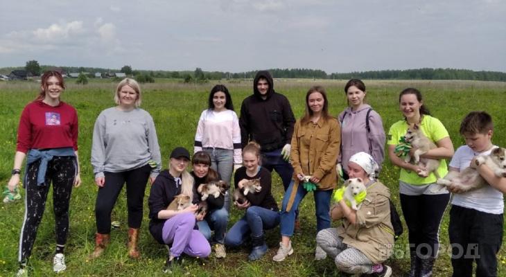 Кировчане помогли приюту для животных в Осинцах