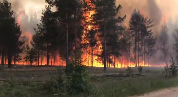 В лесах Кировской области сохраняется чрезвычайная пожарная опасность