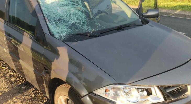 Пешеход погиб под колесами иномарки на трассе «Вятка»