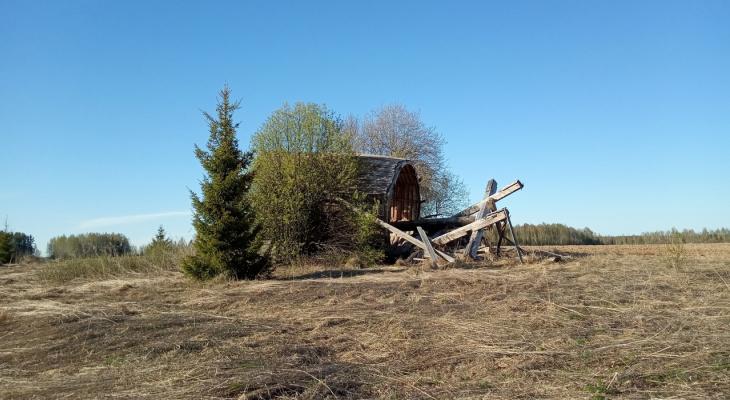 Общественники хотят спасти последнюю деревянную мельницу Кировской области