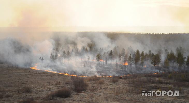 3 гектара леса горели в Кировской области в выходные