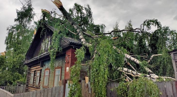 В Слободском районе ураганом повреждены дома, теплицы и заборы