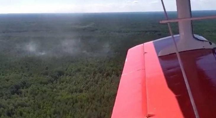 Кировские пожарные на вертолете тушили 12 гектаров леса