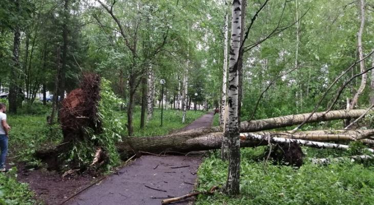 Кировчан предупреждают об опасных природных явлениях