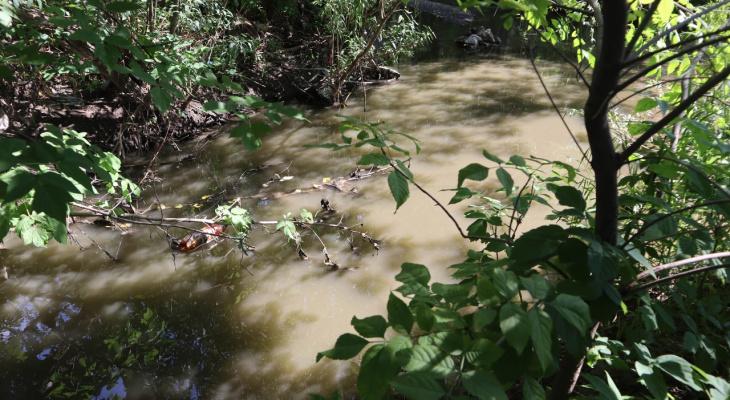 «Вода грязная, пахнет и пенится»: кировчане жалуются на состояние воды в Хлыновке