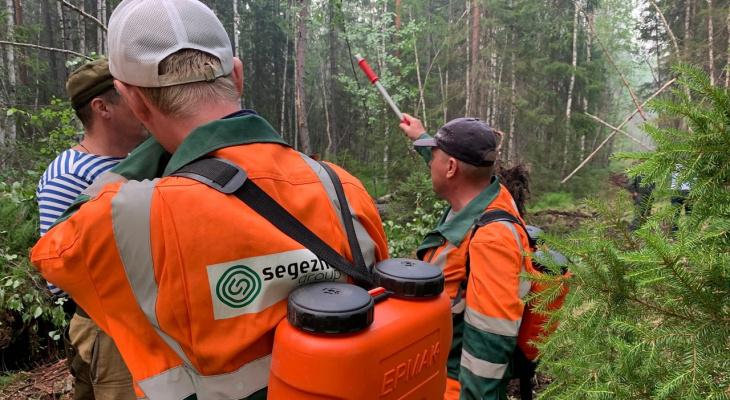 Вятский фанерный комбинат помогает тушить пожары в Кирсинском районе