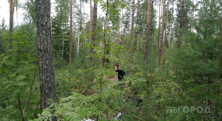 В Кировской области в лесу нашли двух пропавших подростков