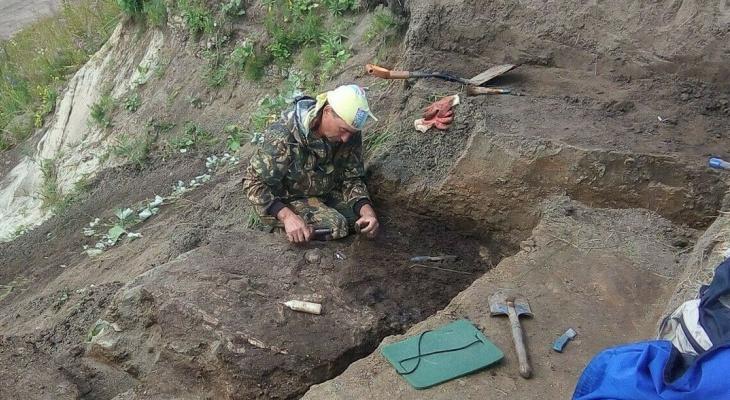 Кировские палеонтологи нашли скелет морского динозавра