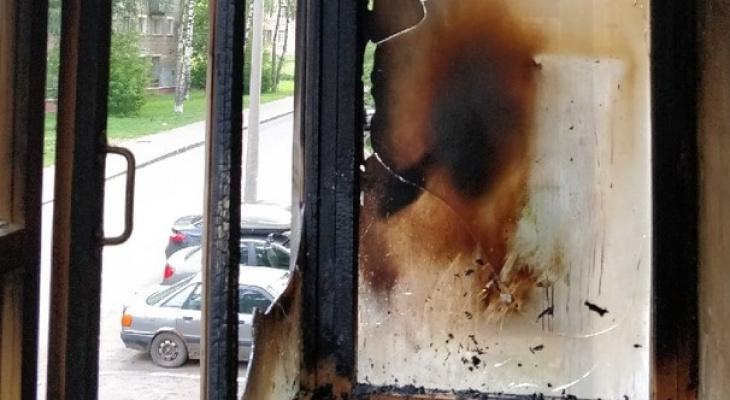 Благодаря кошке жителям Кирова удалось спасти свою квартиру от пожара