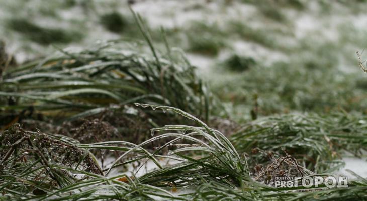 В Кировской области объявлено метеопредупреждение в связи с заморозками