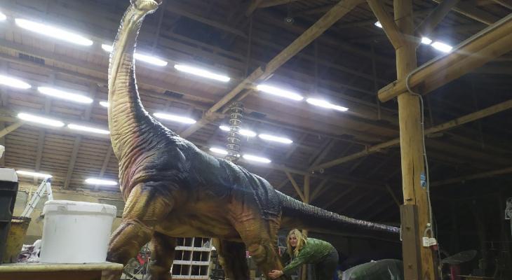 Кировчанка раскрашивает фигуры динозавров высотой с трехэтажный дом