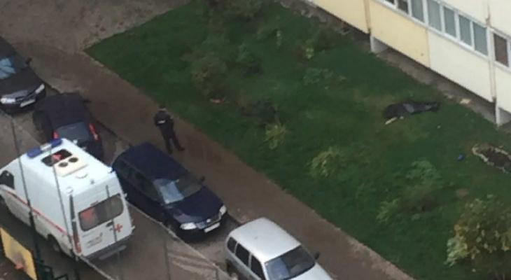 В Кирове на Заводской из окна высотки выпал человек