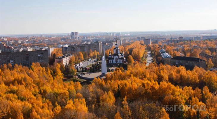 Середина осени в Кирове удивляет золотой листвой: фоторепортаж