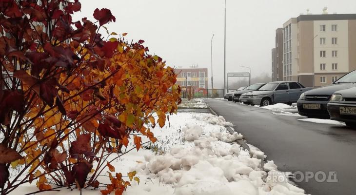 В Кирове солнечная погода сменится на снегопады и дожди: прогноз на неделю