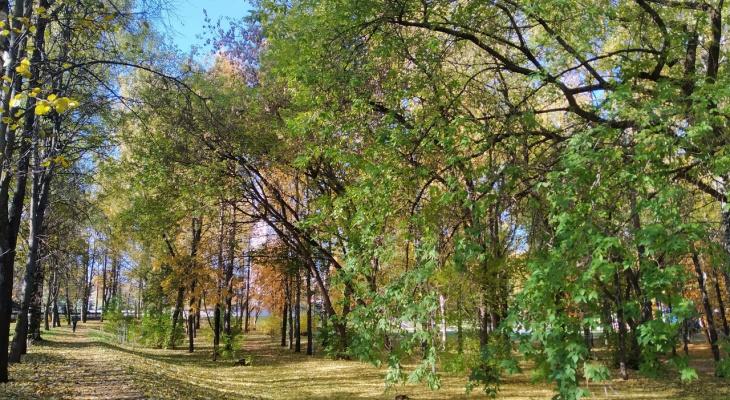 В Кирове появится парк с зонами отдыха и велосипедной трассой